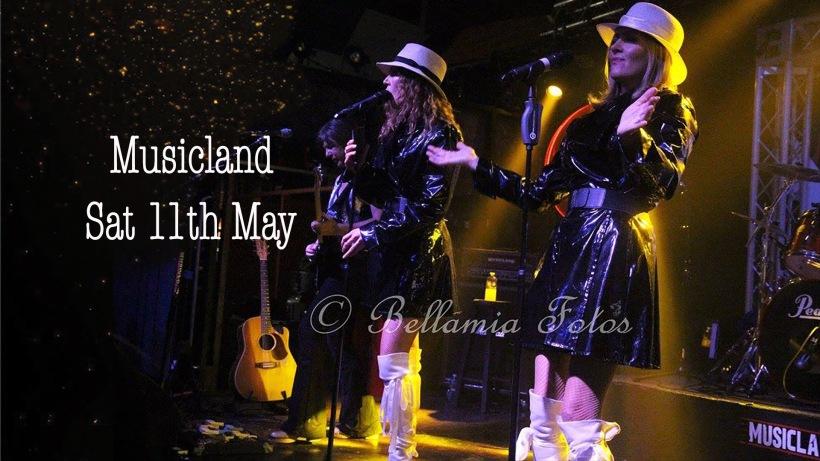 Musicland 3.jpg
